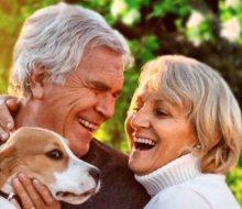 DDUK UK DATING FOR PET LOVERS